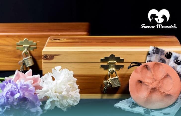 Keep Your Pet's Ashes at Home